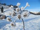 ricami di neve