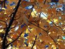 autunno sul Cuel de la Bareta