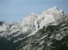 Jalovec alpi giulie orientali foto di Becchetti Maria